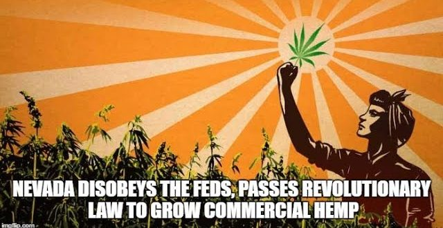 Nevada-Disobeys-the-Feds-Passes-Revolutionary-Law-to-Grow-Commercial-Hemp